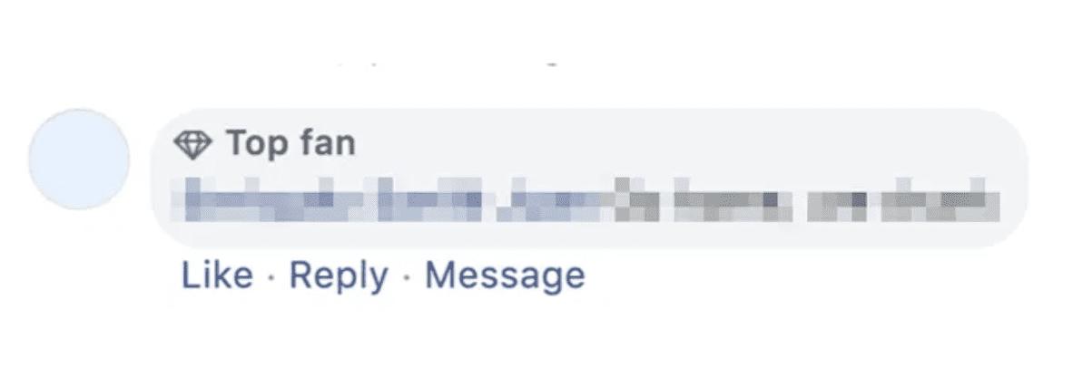 Facebook Top Fan Badge Icon